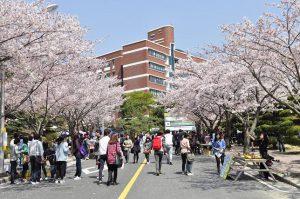 Trường Nhật Ngữ Katugaku Shoin – Kyoto