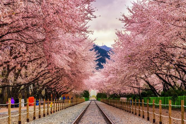 Những điểm du lịch nổi tiếng của Hàn Quốc mà du học sinh nên ghé thăm.