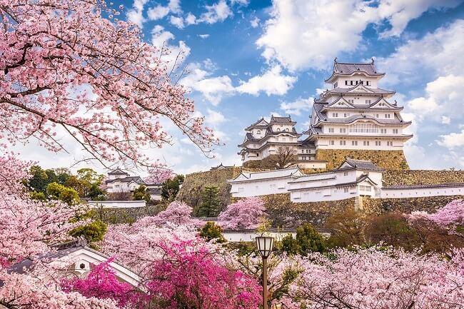 Những câu hỏi phỏng vấn thường gặp khi xin visa ở Đại sứ quán Nhật Bản
