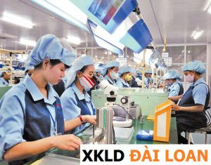 Những nhóm công việc chính của xuất khẩu lao động Đài Loan