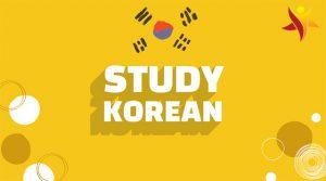 Bật mí cách tự học tiếng Hàn Quốc nhanh nhất cho người mới bắt đầu