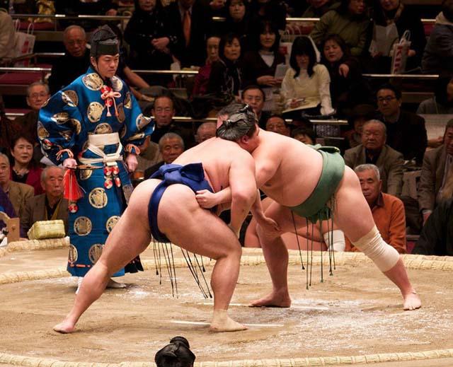 lễ hội sumo nhật bản