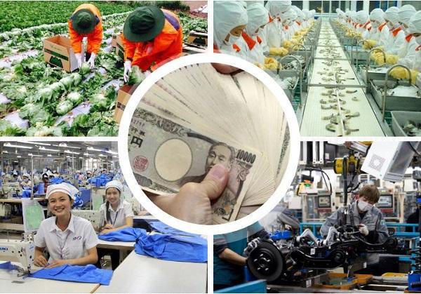 Lương xuất khẩu lao động Nhật Bản