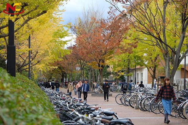 Du học Nhật Bản kỳ tháng 10