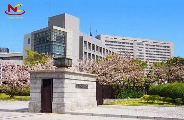 Du học ngành công nghệ thực phẩm tại đại học Osaka