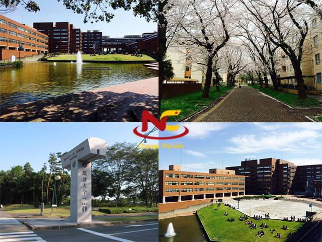 Khuôn viên trường đại học Tsukuba