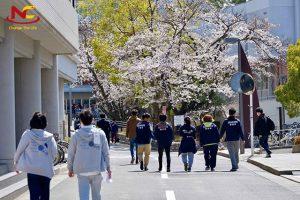 Nên đi du học Nhật vào tháng mấy? Kỳ nhập học chính tại Nhật