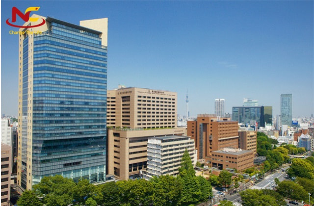 Trường Đại học Y ở Nhật bản