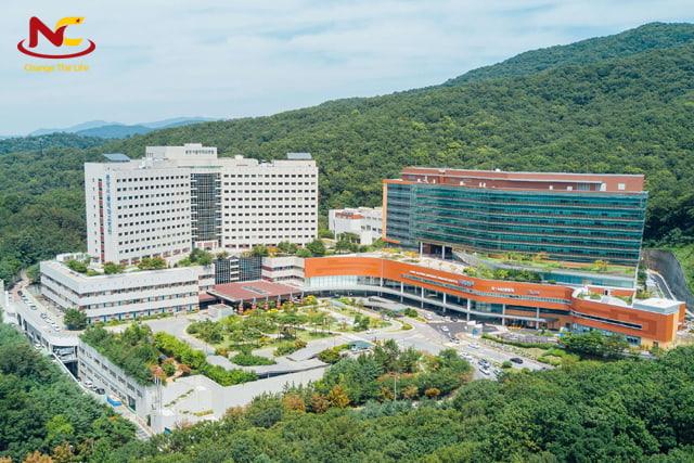 trường đại học công lập Hàn Quốc ở Seoul