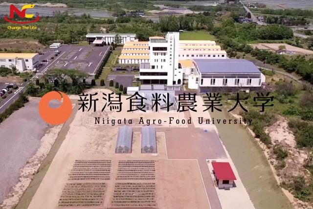 Đại học Nông nghiệp và Thực phẩm Niigata