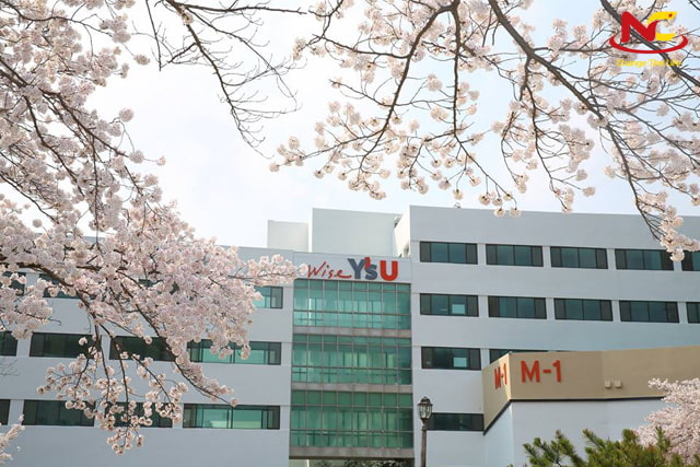 Trường đại học Youngsan ở Busan