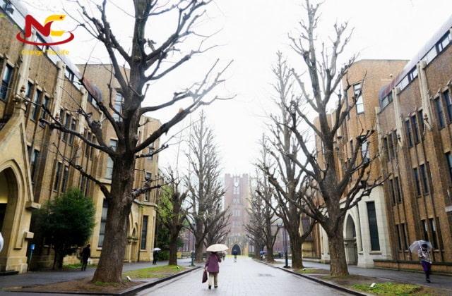 Du học Nhật Bản ngành kế toán tại Tokyo