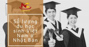 Số lượng du học sinh Việt Nam tại Nhật Bản hiện nay như thế nào?