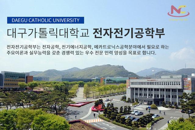 các trường đại học ở daegu