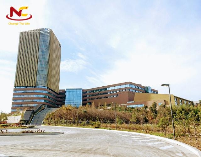 Đại học Teikyo ở Nhật Bản