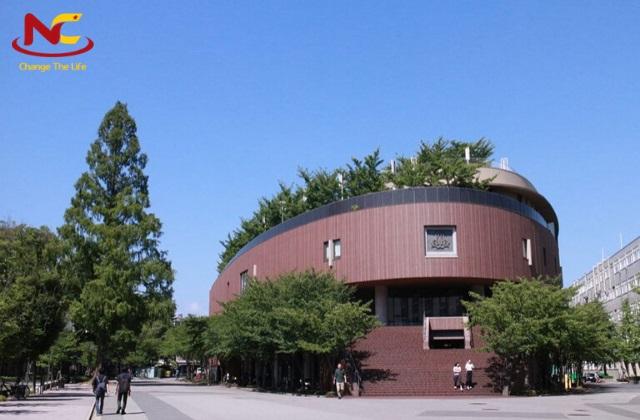 Học ngành tâm lý tại đại học kansai
