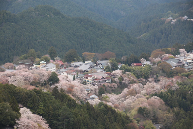 Làng cổ Nhật Bản Yoshinoyama