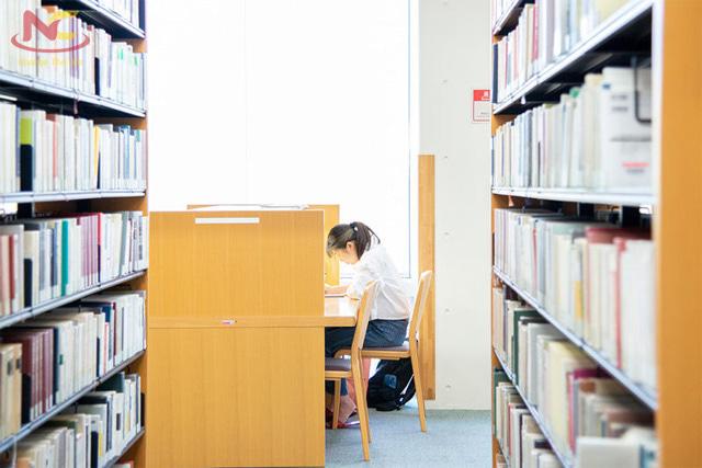 Học phí trường đại học ngoại ngữ Tokyo
