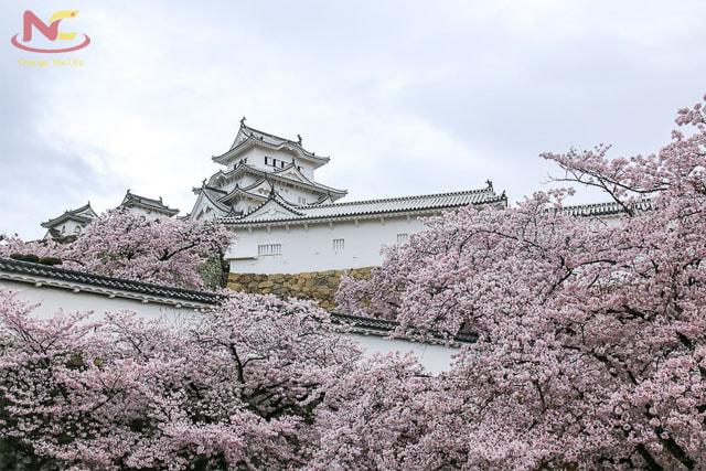 Khí hậu tỉnh okayama