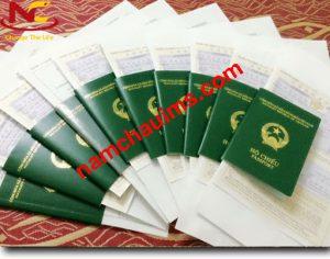 Quy trình thủ tục xin visa kỹ năng đặc định Nhật Bản 2020
