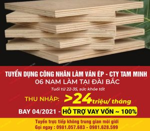 Tuyển 3 lao động nam làm ván ép tại Đài Loan cho c.ty Tam Minh