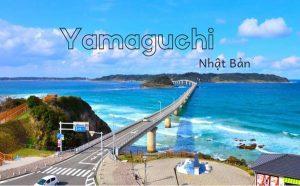 Tỉnh Yamaguchi của Nhật Bản và tiềm năng XKLĐ không thể bỏ qua