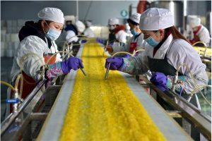 Tuyển 30 nữ chế biến thức ăn kèm, lương 33 triệu tại Nhật Bản