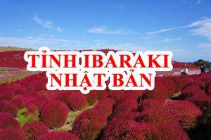 Tỉnh Ibaraki Nhật Bản – Điểm đến làm việc có mức lương cao nhất